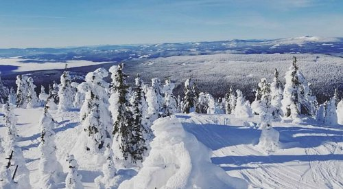 Another 'powder alert' for Big White following 13 cm of snow in 24 hours